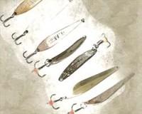 Spoon-baits winter
